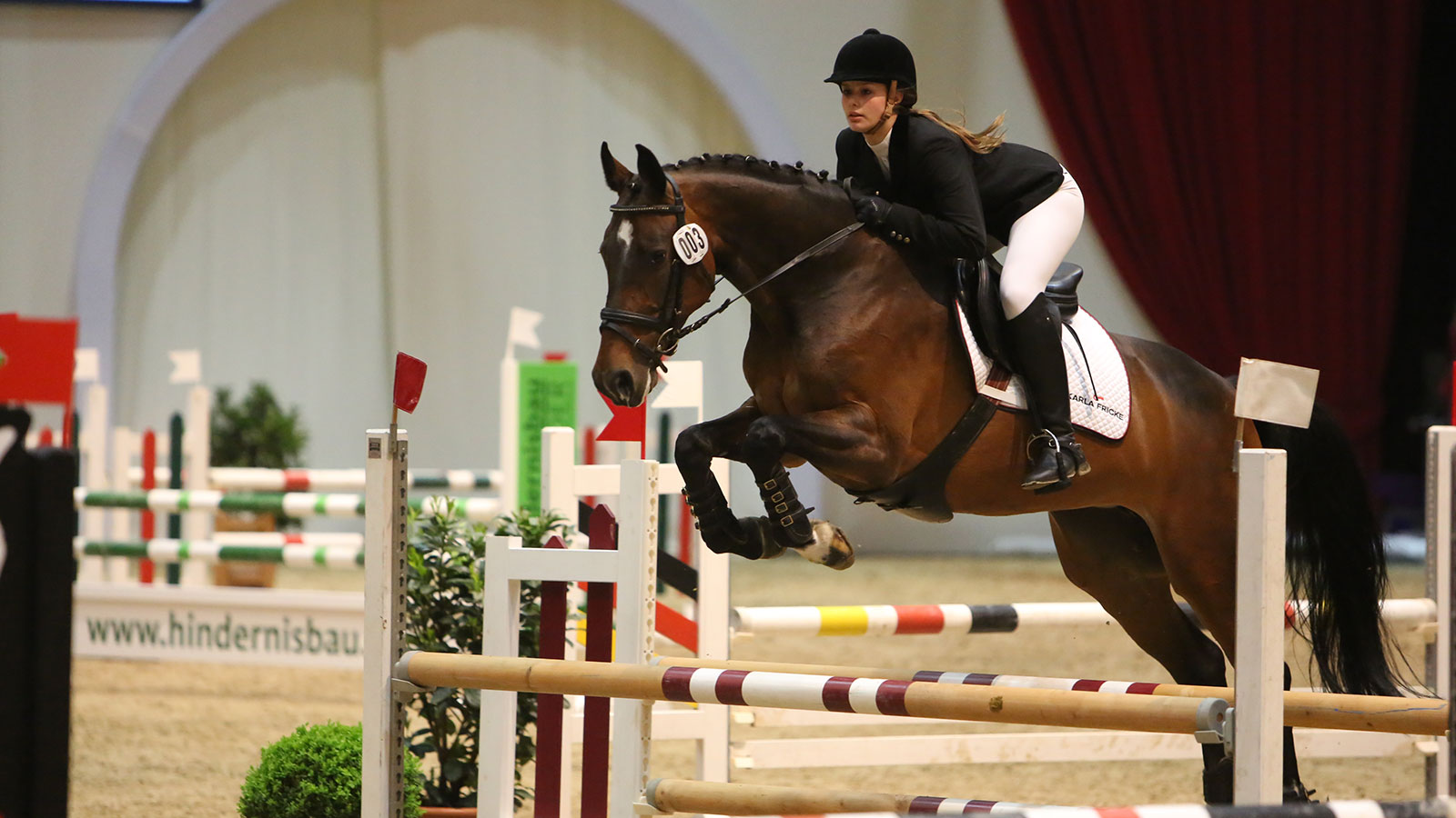 Show jumping at the HansePferd trade fair in the exhibition halls of Hamburg